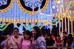 Gardens by the Bay Christmas Wonderland - Spalliera Dec '15 (knowenoughhappy) Tags: christmas light gardens by bay singapore december dec installation groove wonderland luminaire 2015 spalliera supertree