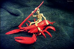Skelly & the red Lobster (VintageReflection) Tags: tales from toy box skeleton lostillusion75 2015 skull spielzeug arrr plastic figure figur tabletop adventure omatic der guy toys undead fight retrotwin rider play monster action ahoi ghost man dead people little skelett unterwater love red hummer lobster skelly pose poseskeleton rement gerippe scale crayfish crawfish calavera