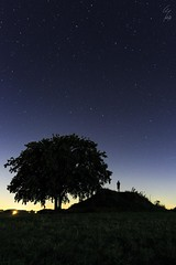 Autoportrait - Self portrait - 24/08/2016  Montenaken (Be) (Geoffrey Maillard) Tags: portrait ciel sky himmel hemel night nuit toiles toile star stars sterren ster grande ourse light lumire pollution tumulus gallo romain galloromain antique vestiges tumuli tree arbre self autoportrait couleur nacht belgique belgien belgium belgie watch observer observation humain human de