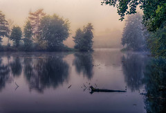 Sonntag morgens :o) (Florian Grundstein) Tags: lake misty morning mirror reflection trees water fog mist foggy mystic forest cloud autumn upperpalatinate oberpfalz bavaria bayern nikon fx d610 nikkor landscape lakescape
