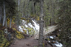 A Fall trip to Rawson Lake Alberta Canada (davebloggs007) Tags: rawson lake alberta canada fall 2016 sarrail falls new bridge