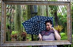 IMG_9863 (Raypower) Tags: singapore phuket cruise royalcaribbean mariner hawkermrkets botanichardens gardens marinabaysands marina sands patong karon escher museum oldtown chinatown canal flower butterfly prayer elephant cockles popiah rojak green