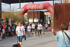 "Can-rerra Popular 2016 - Llegada y descanso tras la carrera -Arcadys.org Biopark Valencia-14 • <a style=""font-size:0.8em;"" href=""http://www.flickr.com/photos/145784091@N07/29964505680/"" target=""_blank"">View on Flickr</a>"
