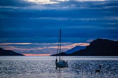_MG_5138 (Flyfifer Photography) Tags: greatbritain highland invernessshire knoydart places scotland unitedkingdom
