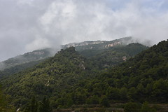 Farena, Alt Camp (esta_ahi) Tags: farena altcamp montral tarragona spain españa испания