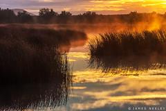 Misty Morning (James Neeley) Tags: idaho marketlake sunrise landscape jamesneeley
