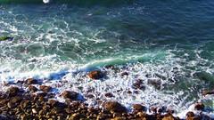 #pacificocean #Palosverdes #California (Jordon Papanier) Tags: pacificocean palosverdes california