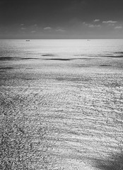 Sea texture (Stephen_Hartley) Tags: eastsussex englishchannel seascape sea texture blackandwhite landscape sunlight horizon mono waves ripples