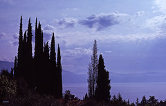 Lago di Garda, Italia (BudCat14/Ross) Tags: italy italia lakes lagodigarda