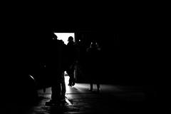 BW (Mathieu Thiebaut | http://www.mathieuthiebaut.com) Tags: bw nb black white noir blanc noiretblanc blackandwhite monochrome light outdoor silhouette contrast contraste