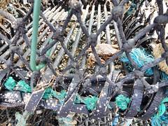 Stonehaven Harbour - Scotland (DanoAberdeen) Tags: fishingbasket crabtrap stonehaven harbour scotland dano aberdeen aberdeenshire fishing village peaceful tranquil bonnyscotland calm relaxed climate conservation preservation nature boat yacht sky blue cloud dreamscape scenery landscape h2o water countryside digital wilderness wildlife candid amateur schotland iskoçya skottland schottland albain шотландия škotija stoney autumn winter summer spring ecosse escocia scotia fishingvillage scottishhighlands highlands trawlers boats kincardine bay auldtoon beach playa plage northsea clouds bluesky pleasureboat vessels stonehavenbeach baystonehaven fishingtown escotia geotagged