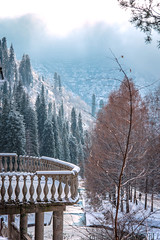 Mist (sem9077) Tags: autumn beautiful mountains tree forest mist snow colorful photos photography nature nikon nikond750 fx kazakhstan almaty asia