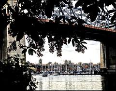 A bridge view... (Marcia Portess-Thanks for a million+ views.) Tags: abridgeview marciaaportess marciaportess map vancouvercanada vancouverbc burrardstreetbridge bridge marina water falsecreekvancouver sea ocean lamar elmar view vista westendvancouver agua boats