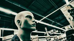 Human cloned by  hyper market (johann walter bantz) Tags: modernart artofvisual europe france mysterious dada surreal color lumixlx100 industrial hypermarket hypermarch experimental mannequin