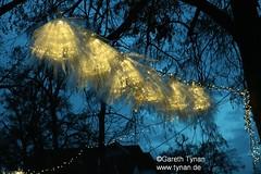 s161127a_0195+_EisBlumen (gareth.tynan) Tags: iceflowers eisblumen weihnachtsbeleuchtung eigenbauartpeople entwerfbrigittegrausamtynan langen romoratinanlage
