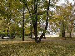 2016-10-25-7366 (vale 83) Tags: kalemegdan belgrade serbia nokia n8 friends colourartaward coloursplosion lunaphoto thebestyellow autofocus