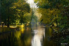 CANAL DE BRUJAS (NaiaraFerC) Tags: canal agua natur verde reflejo viaje water green reflectation travel calma tranquilidad nice paisaje landscape bonito beautiful