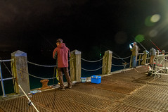 night work (Tony Shertila) Tags: 20161026205548 bournemouth england gbr unitedkingdom westbourneandwestcliffward geo:lat=5071411020 geo:lon=187456369 geotagged europe britain dorset poole coast town pier landmark beach outdoor fishing fisherman hobby rod