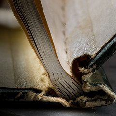 stitch (rosserx) Tags: macromondays stitch book binding old fallingapart
