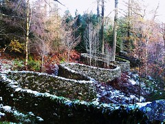 taking a wall for a walk -  Andy Goldsworthy (Bad*Wolf*) Tags: grizedale forest cumbria lakedistrict supersaturday autumn snowthelakes sculpture landart theplacetobe andygoldsworthy