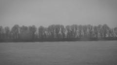 Bubendey-Ufer, Hamburg (difridi) Tags: difridi hamburg elbe norddeutschland hafen harbour bubendeyufer monochrome blackandwhite schwarzweiss hadag linie62 river fluss grey grau winter