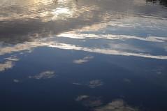 Sonnenaufgang an der alten Treeneschleife in Sderhft; Nordfriesland (17) (Chironius) Tags: schleswigholstein deutschland germany allemagne alemania germania  niemcy sderhft nordfriesland treene fluss river rivire rio  fiume stream spiegelung refleksion reflection rflexion riflessione  reflexin yansma himmel sky ciel cielo hemel  gkyz wolken clouds wolke nube nuvole nuage  wasserspiegel wasser
