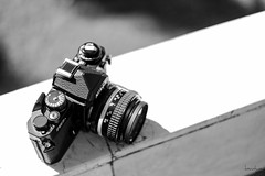 Nikon FM3a (2) (Daniel Y. Go) Tags: fuji fujixpro2 xpro2 philippines nikon fm3a analog mono bw