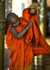 _MG_6327-le-18_04_2016-wat-thail-wattanaram-maesot-thailande-christophe-cochez-w2 (christophe cochez) Tags: thailand thailande maesot watthailwattanaram monk bonze myawadyy myanmar burma burmes birman birmanie religion travel voyage asie asia asian bouddhiste bouddhisme buddhist buddhism