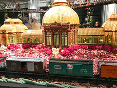HTS-12 (Peter Parides) Tags: unitedstates christmas trains newyorkbotanicalgardens new york city newyork