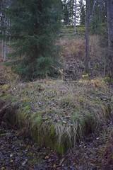 DSC_3671 (porkkalanparenteesi) Tags: hyltty neuvostoliitto bunkkeri abandoned soviet bunker kirkkonummi porkkalanparenteesi