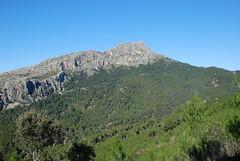 "Galilea (41) the Stinging Peak <a style=""margin-left:10px; font-size:0.8em;"" href=""http://www.flickr.com/photos/122939928@N08/31454308345/"" target=""_blank"">@flickr</a>"