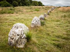 Steinreihe (YaYapas) Tags: standingstones frankreich bretagne steine fr carnac lx7 alignments menhire megalithe steinreihe ménecalignments