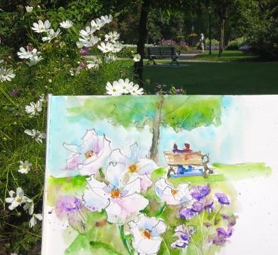 rosetta mcclain park - watercolour