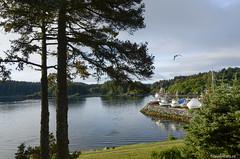 20150809_Ons uitzicht in Kodiak (Travel4Two) Tags: alaska kodiak c0 s0 verenigdestaten 5000k adl0