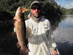 Amazonia 2012 (66)