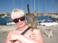 Rhodes Town (JohnnyDalmas) Tags: cat stray rhodes sanctuary mandraki rhodos