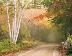 Cilley Hill Road in Underhill, Vermont. (robophoto2015) Tags: road morning travel autumn trees vacation orange white mist holiday color colour tree fall tourism leaves horizontal misty fog rural america season landscape outside outdoors landscapes countryside early travels scenery holidays vermont peace tour seasons outdoor country seasonal foggy scenic newengland peaceful scene nostalgia dirt american lane nostalgic underhill birch roads traveling deciduous tours northeast scenes idyllic vacations touring rd vt scenics folliage oldfashioned lanes yesteryear atpeace birchs greenmountainstate cillyhillroad
