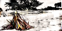 Tahunanui Beach (Tehau) Tags: collage photocollage outdoor mixedmedia colour blackandwhite photomontage photojoiner joiner panography landscape