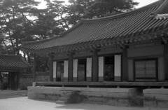 소수서원, 紹修書院, A building of the Sosu confucianism school, Korea (heliarkorea) Tags: carlzeiss tessar fujiacross100 한국어flickr zeissikoncontaflexi confucianismschool