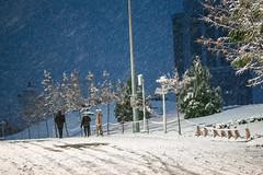La journe commence (- Ali Rankouhi) Tags: park winter water fire iran tehran       1394