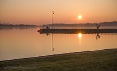 Palic lake 22-12-2015 Serbia (jozefkujundzic) Tags: lake dan birds night swan pond nap day serbia este noc palic vojvodina srbija jezero vajdasag