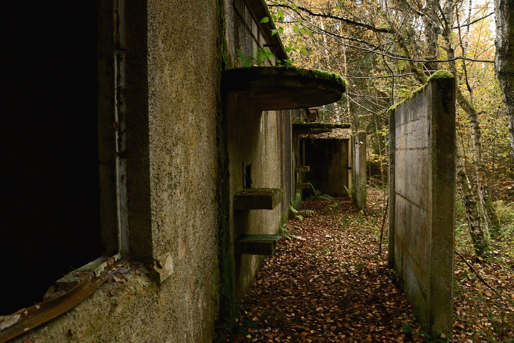 The World's newest photos of abandonné and plantes ...