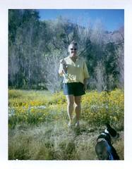 Floyd & me (and Ivan) 10-16-16 (EllenJo) Tags: polaridweek october2016 polaroid instantfilm ellenjo ellenjoroberts colorpack3 fujipc100c floyd chihuahua lowertapco clarkdaleaz verderiver ivan