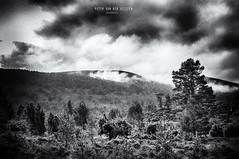 Kingussie: mysterious forests.. (Exper!ence it) Tags: scotland inverness kingussie badenoch hiking walking nature forest mountains hills bw blackandwhite clouds dramatic skies