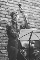 20161007-235201 (cmxcix) Tags: curlyphotography dimitarkaramfilov hilda jazz music nikon nikond750 nikonfx studio5 indoors sofia sofiacity bulgaria bg