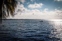 fisherman (Davyahoua) Tags: ivory coast ivorycoast jacqueville lagune village mer sea palmer palmier cte horizon photographe bleu work chill cool afro afrique african canon canon70d canon2470mm
