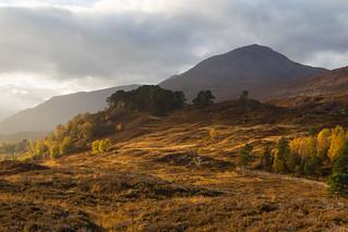 Glen Affric. Scotland.