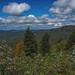 Caney Fork Overlook (Blue Ridge Parkway, Asheville, North Carolina)