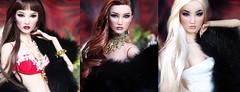 Demetae sisters (kingdomdoll) Tags: draig seren morgana demetae kingdomdoll kingdom doll resinfashiondoll fashion style chinese girl beauty glamour fashiondoll