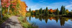 Autumn at Centennial Park Lake (James P. Mann) Tags: autumn centennial park moncton fall water lake colour color leaves leaf maple trees